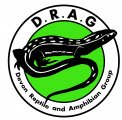 Devon Reptile & Amphibian Group (DRAG)