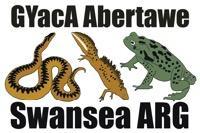 Swansea ARG / GYacA Abertawe